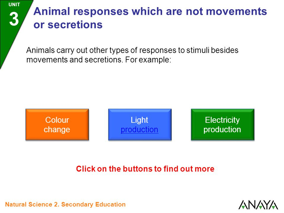 UNIT 3 Animal responses which are not movements or secretions Natural Science 2.