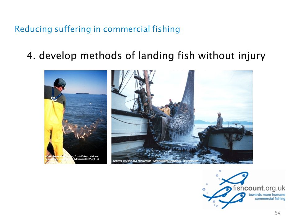 4. develop methods of landing fish without injury Reducing suffering in commercial fishing 64 NOAA Restoration Center, Chris Doley. National Oceanic a