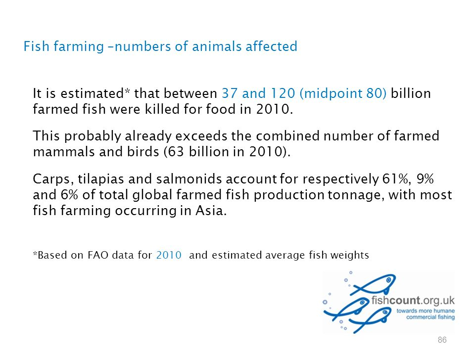 Fish farming –numbers of animals affected It is estimated* that between 37 and 120 (midpoint 80) billion farmed fish were killed for food in 2010. Thi