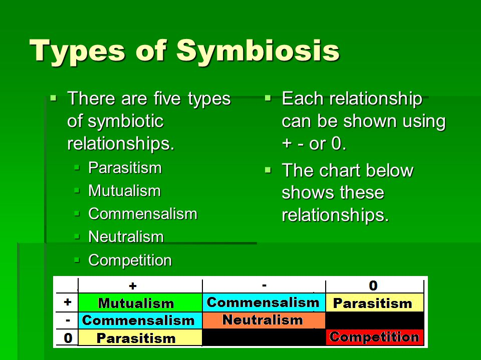 Symbiotic Relationships  Definition: A relationship between two kinds of organisms that lasts over a period of time is called symbiosis.