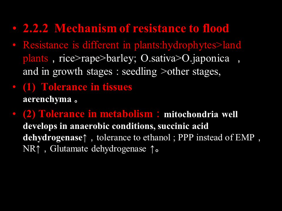 2.2.2 Mechanism of resistance to flood Resistance is different in plants:hydrophytes>land plants , rice>rape>barley; O.sativa>O.japonica , and in growth stages : seedling >other stages, (1) Tolerance in tissues : Well-developed aerenchyma 。 (2) Tolerance in metabolism : mitochondria well develops in anaerobic conditions, succinic acid dehydrogenase↑ , tolerance to ethanol ; PPP instead of EMP , NR↑ , Glutamate dehydrogenase ↑ 。