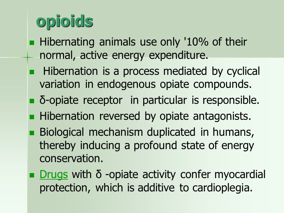opioids Hibernating animals use only '10% of their normal, active energy expenditure. Hibernation is a process mediated by cyclical variation in endog
