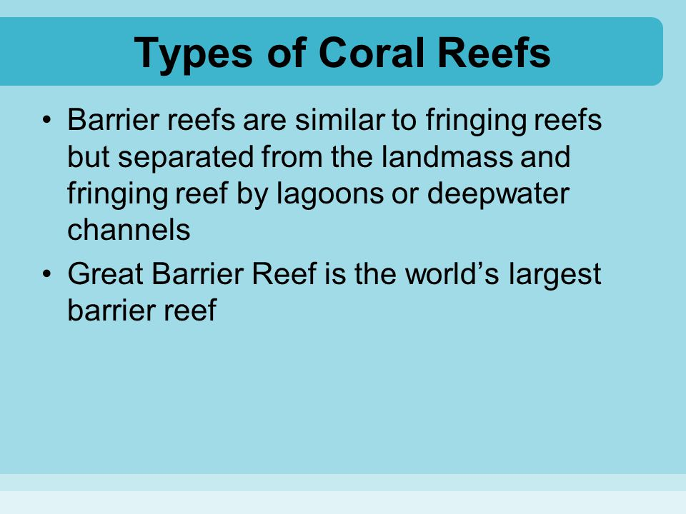 Types of Coral Reefs Barrier reefs are similar to fringing reefs but separated from the landmass and fringing reef by lagoons or deepwater channels Gr
