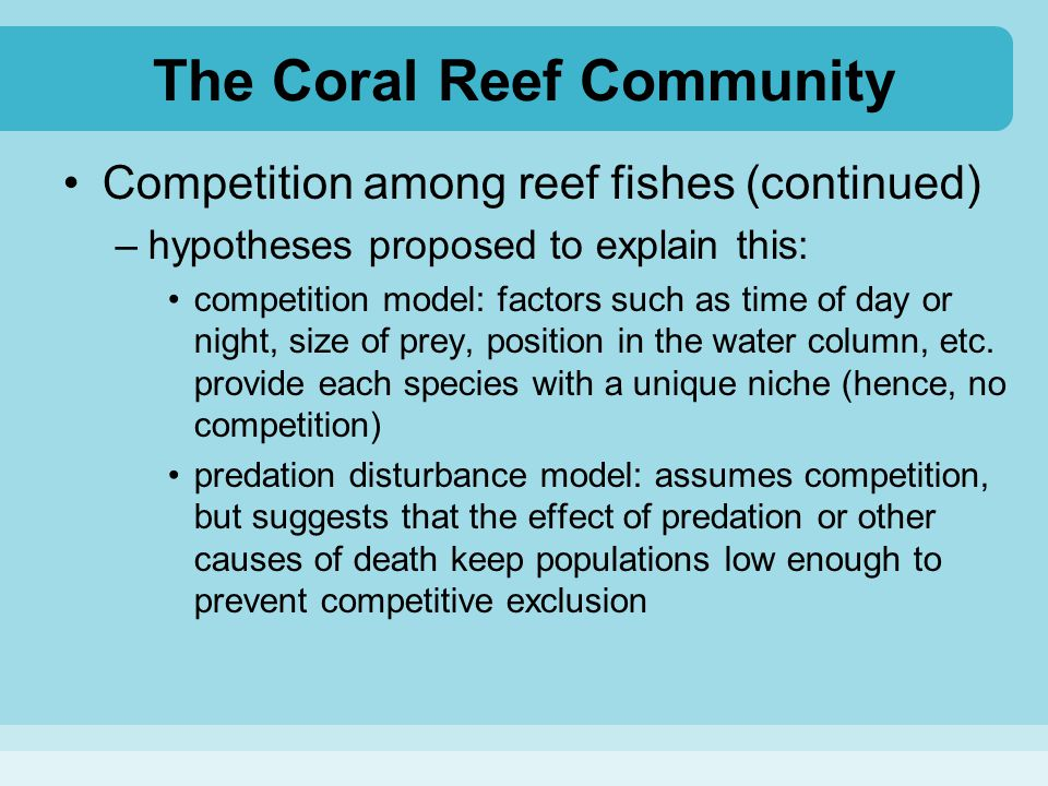 The Coral Reef Community Competition among reef fishes (continued) –hypotheses proposed to explain this: competition model: factors such as time of da