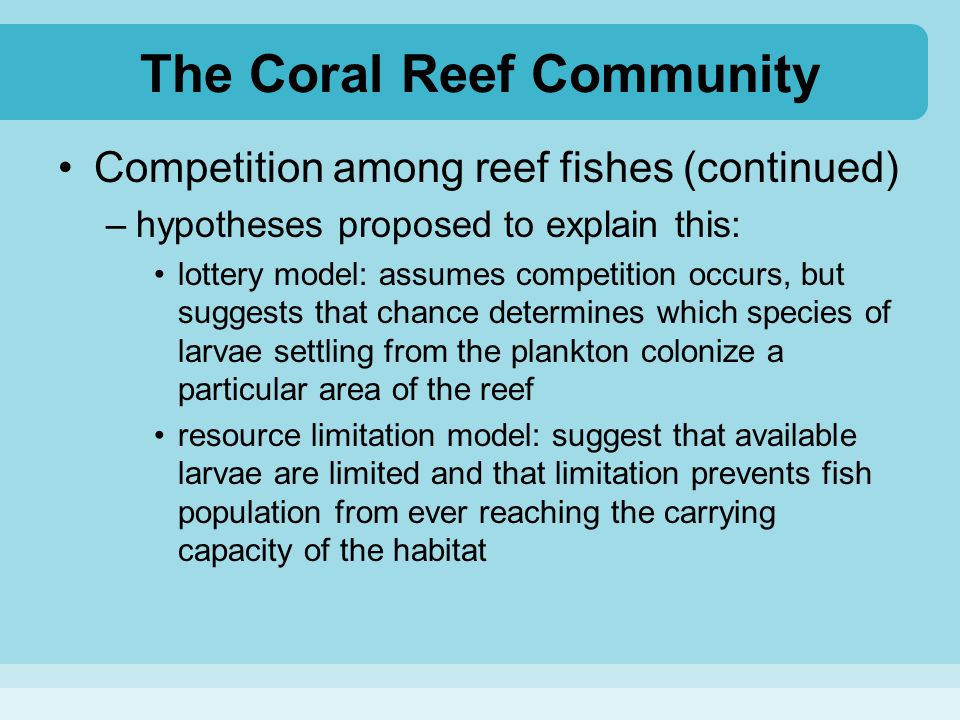 The Coral Reef Community Competition among reef fishes (continued) –hypotheses proposed to explain this: lottery model: assumes competition occurs, bu