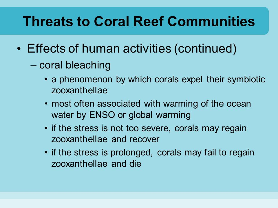 Threats to Coral Reef Communities Effects of human activities (continued) –coral bleaching a phenomenon by which corals expel their symbiotic zooxanth