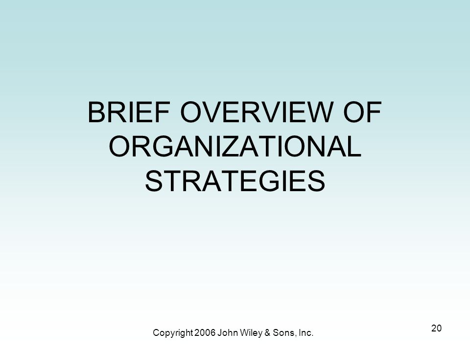 Copyright 2006 John Wiley & Sons, Inc. 20 BRIEF OVERVIEW OF ORGANIZATIONAL STRATEGIES