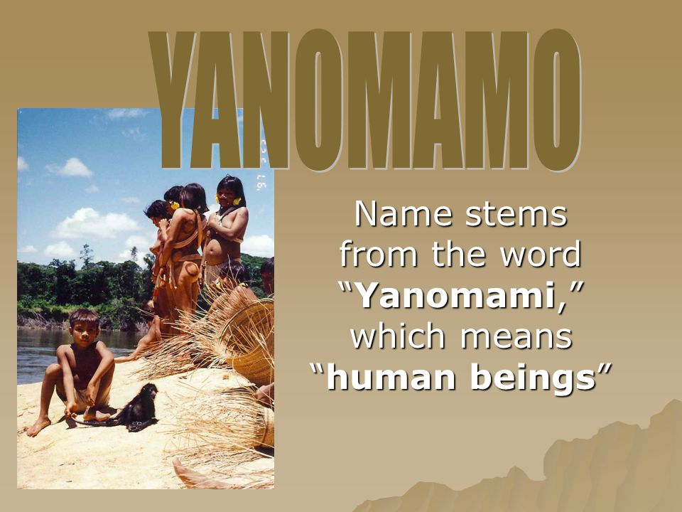 "Name stems from the word ""Yanomami,"" which means ""human beings"""