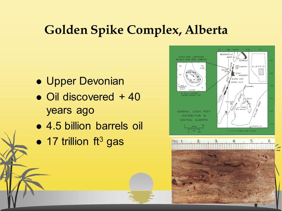 Golden Spike Complex, Alberta l Upper Devonian l Oil discovered + 40 years ago l 4.5 billion barrels oil l 17 trillion ft 3 gas