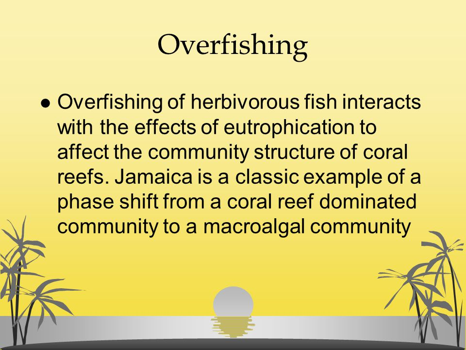Overfishing l Overfishing of herbivorous fish interacts with the effects of eutrophication to affect the community structure of coral reefs. Jamaica i