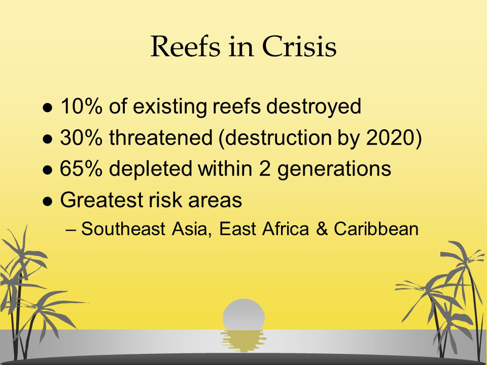 Reefs in Crisis l 10% of existing reefs destroyed l 30% threatened (destruction by 2020) l 65% depleted within 2 generations l Greatest risk areas –So