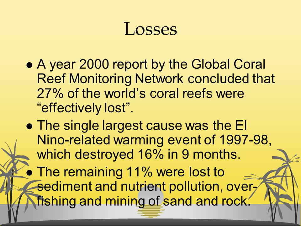 """Losses l A year 2000 report by the Global Coral Reef Monitoring Network concluded that 27% of the world's coral reefs were """"effectively lost"""". l The s"""