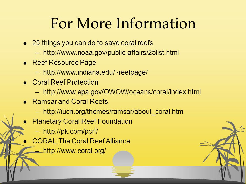 For More Information l 25 things you can do to save coral reefs –http://www.noaa.gov/public-affairs/25list.html l Reef Resource Page –http://www.india