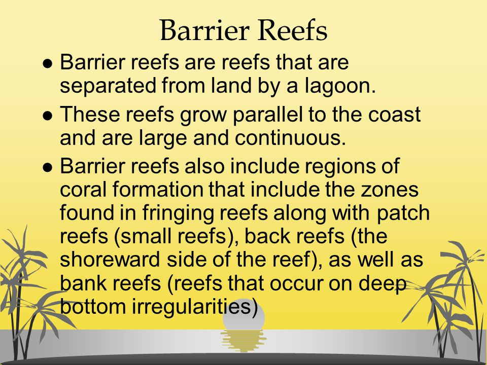 Barrier Reefs l Barrier reefs are reefs that are separated from land by a lagoon. l These reefs grow parallel to the coast and are large and continuou