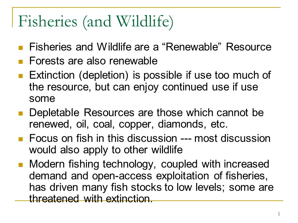 32 Economic Efficiency Extra benefit of fishing not worth extra effort past E* so more conservation than MSY This is economically efficient level, will private market achieve this result.