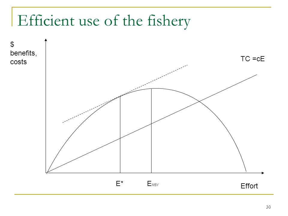 30 Efficient use of the fishery $ benefits, costs Effort TC =cE E*E MSY