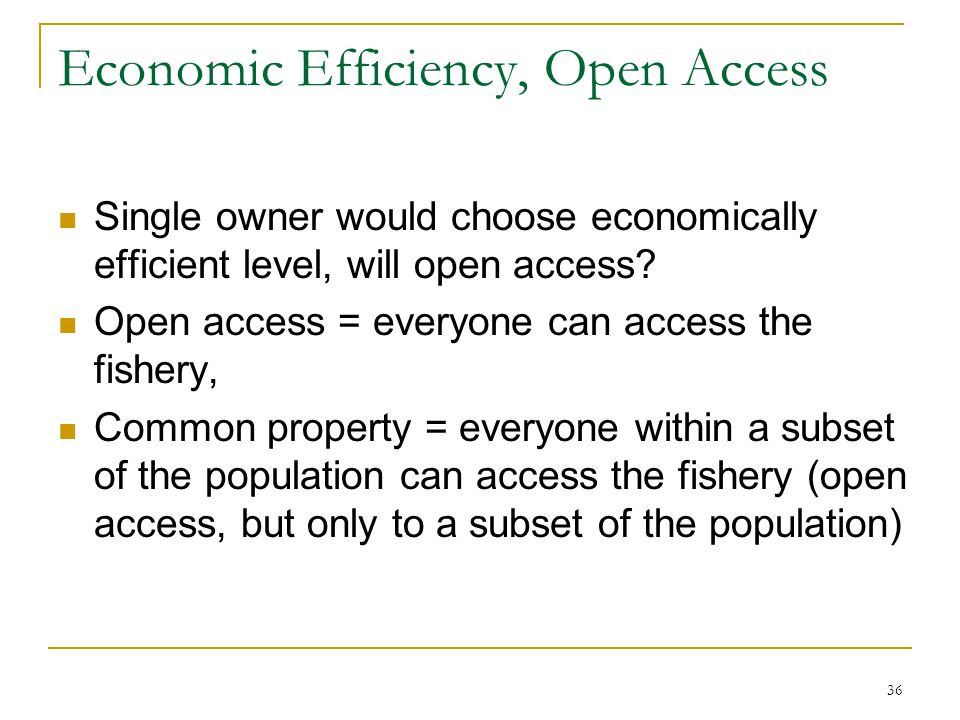 36 Economic Efficiency, Open Access Single owner would choose economically efficient level, will open access? Open access = everyone can access the fi