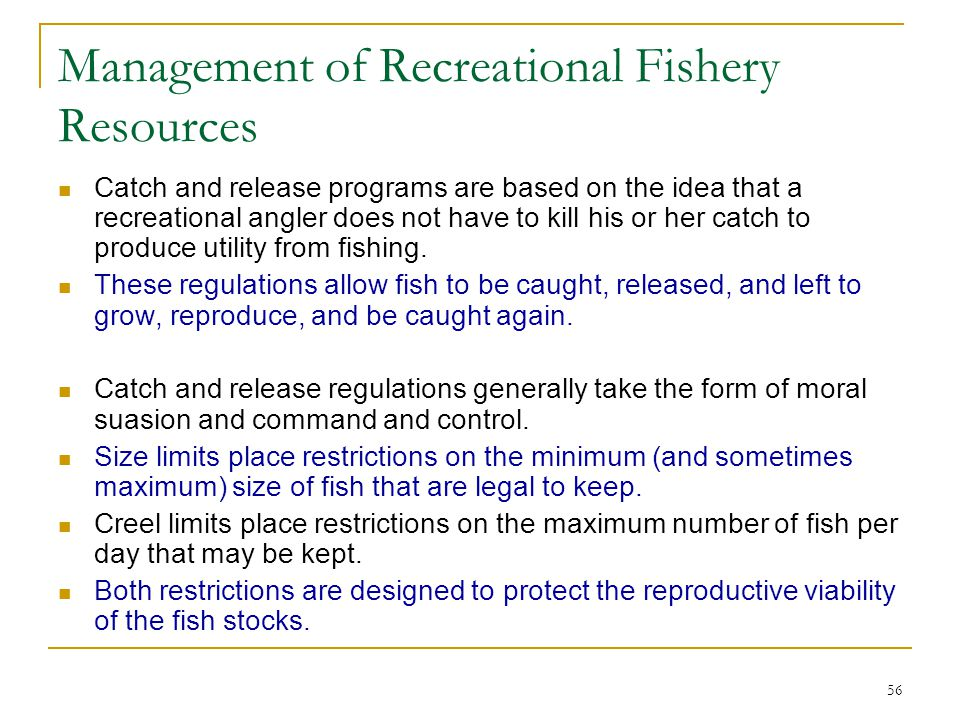 56 Management of Recreational Fishery Resources Catch and release programs are based on the idea that a recreational angler does not have to kill his