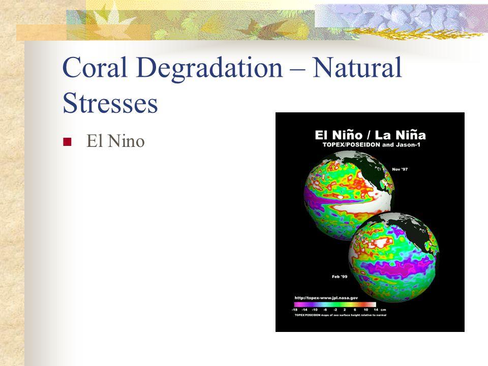 Coral Degradation – Natural Stresses El Nino