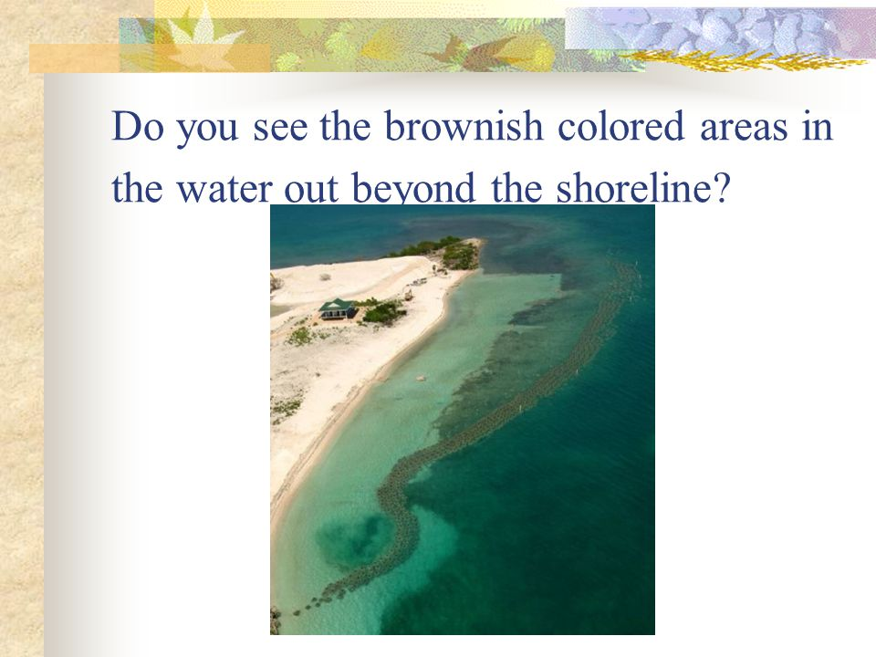Do you see the brownish colored areas in the water out beyond the shoreline