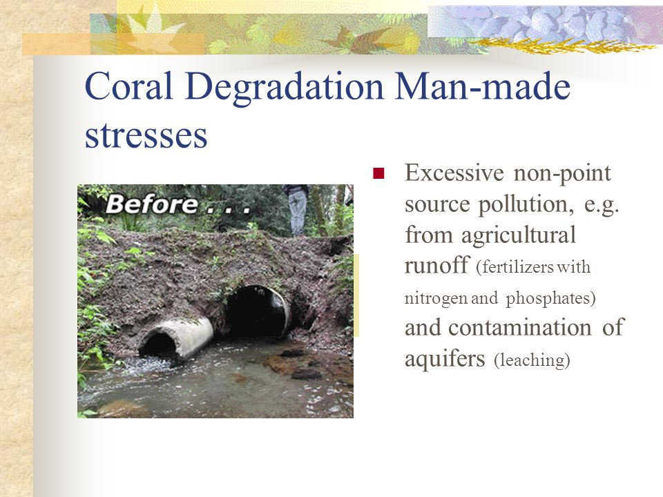 Coral Degradation Man-made stresses Excessive non-point source pollution, e.g.