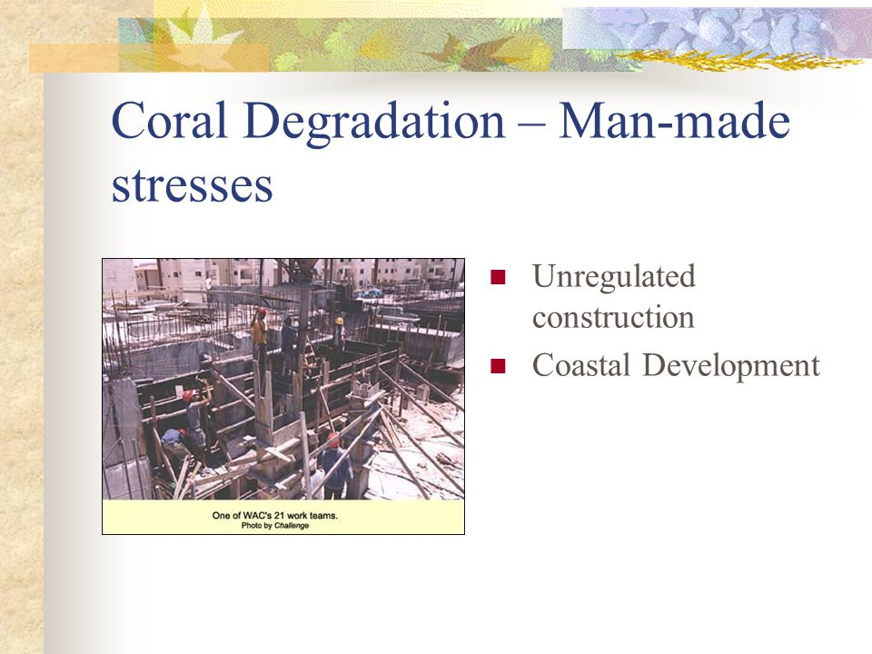 Coral Degradation – Man-made stresses Unregulated construction Coastal Development