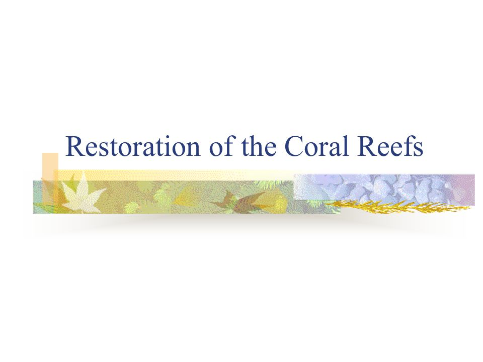 Restoration of the Coral Reefs