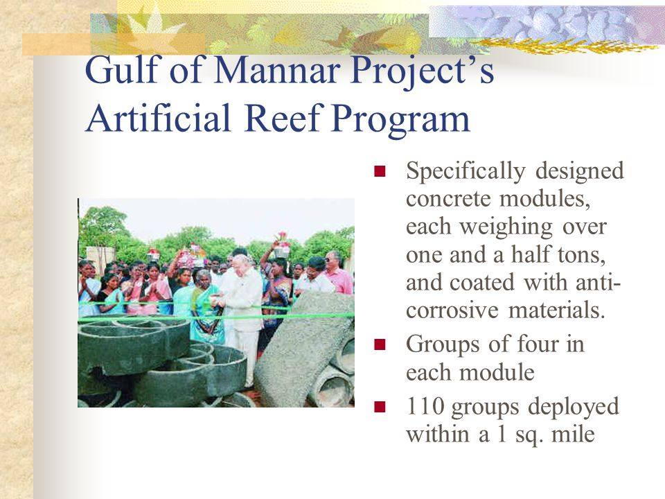 Gulf of Mannar Project's Artificial Reef Program Specifically designed concrete modules, each weighing over one and a half tons, and coated with anti- corrosive materials.