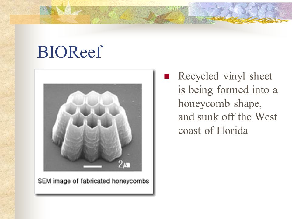 BIOReef Recycled vinyl sheet is being formed into a honeycomb shape, and sunk off the West coast of Florida