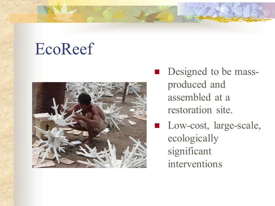 EcoReef Designed to be mass- produced and assembled at a restoration site.