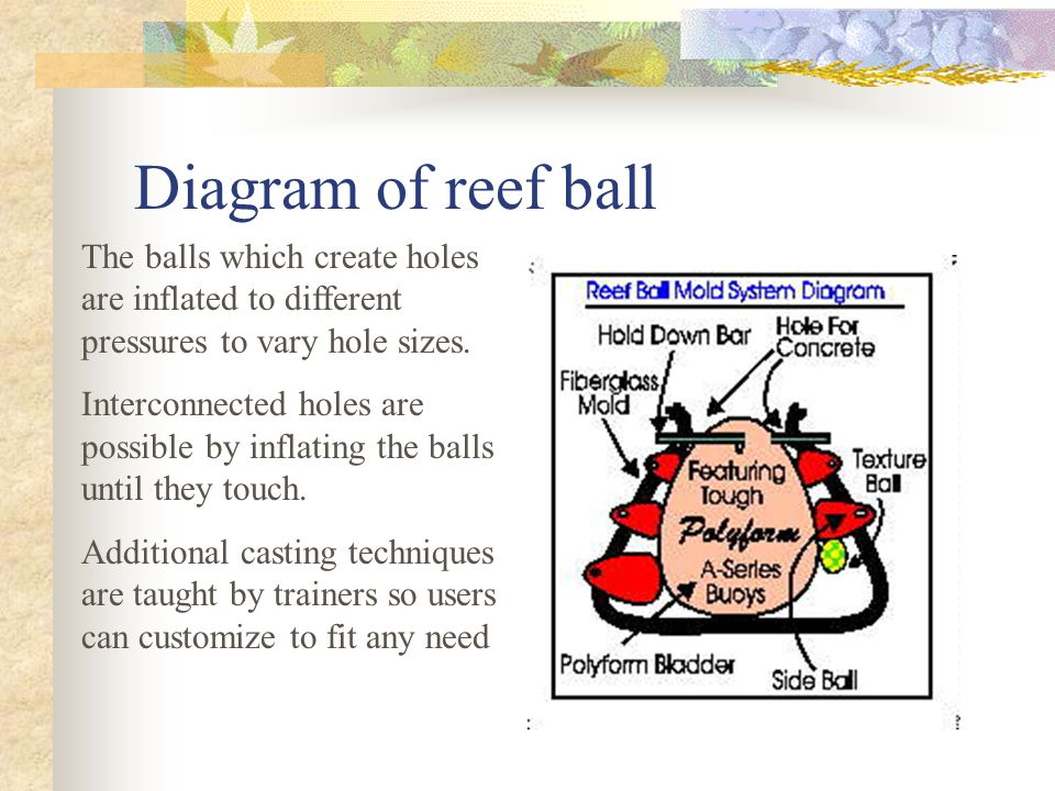 Diagram of reef ball The balls which create holes are inflated to different pressures to vary hole sizes.