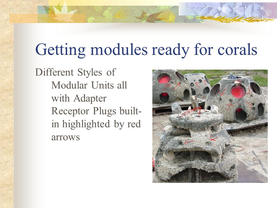 Getting modules ready for corals Different Styles of Modular Units all with Adapter Receptor Plugs built- in highlighted by red arrows