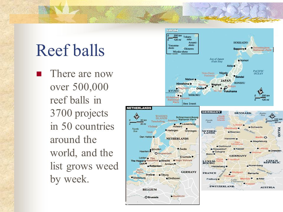 Reef balls There are now over 500,000 reef balls in 3700 projects in 50 countries around the world, and the list grows weed by week.