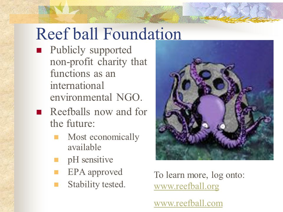 Reef ball Foundation Publicly supported non-profit charity that functions as an international environmental NGO.