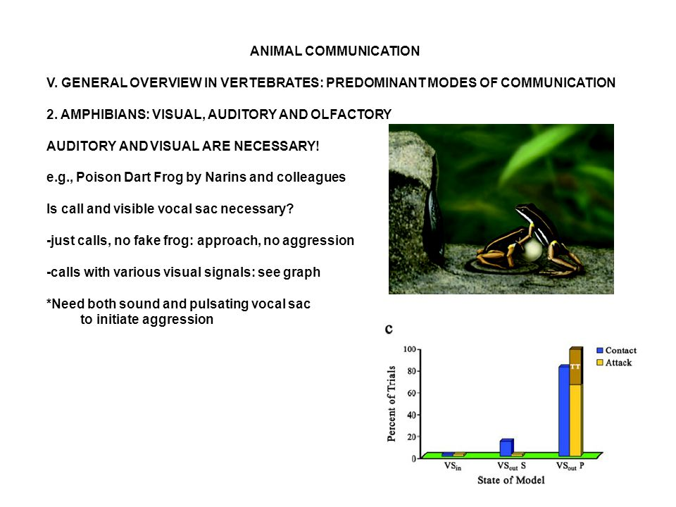 ANIMAL COMMUNICATION V. GENERAL OVERVIEW IN VERTEBRATES: PREDOMINANT MODES OF COMMUNICATION 2.