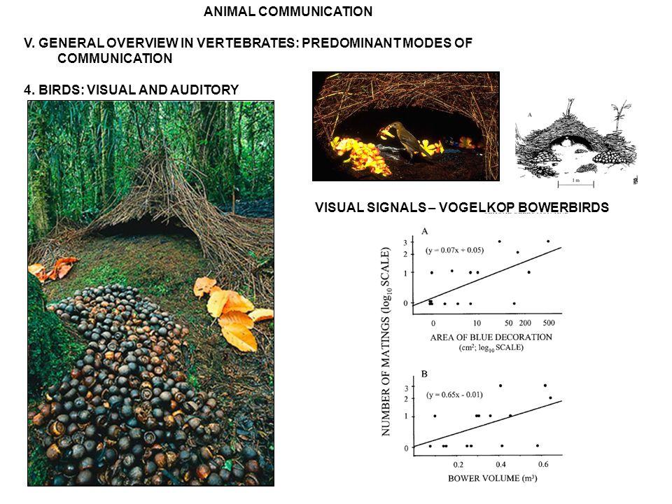ANIMAL COMMUNICATION V. GENERAL OVERVIEW IN VERTEBRATES: PREDOMINANT MODES OF COMMUNICATION 4.