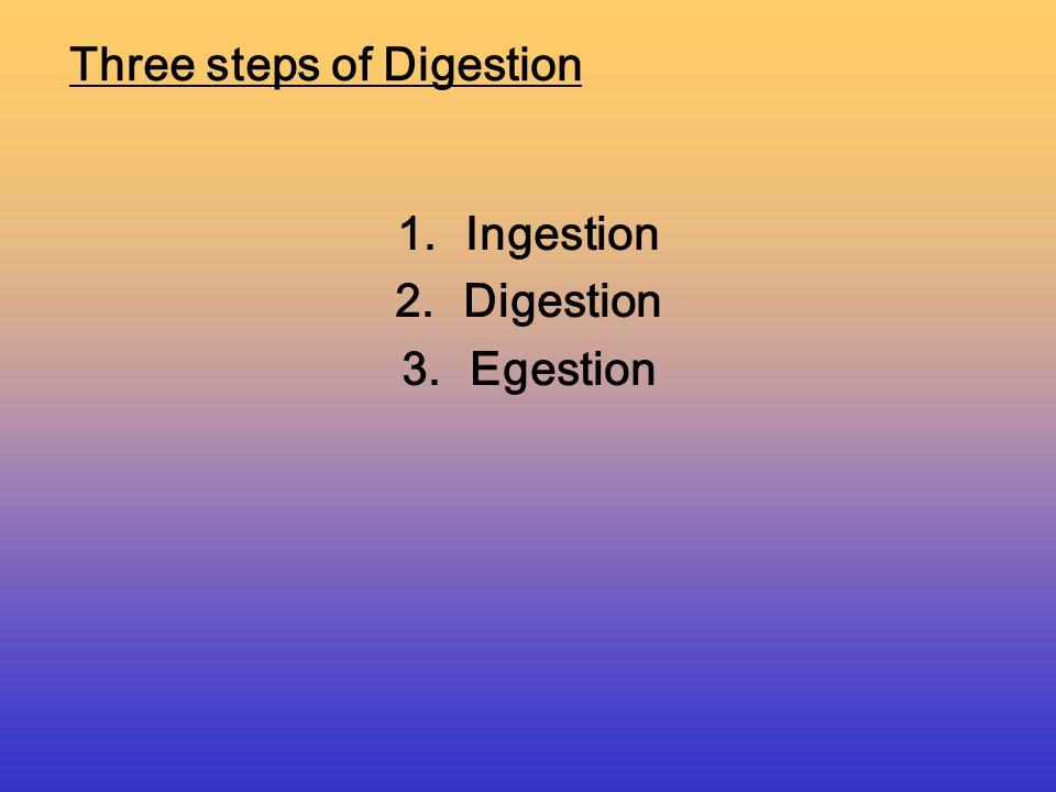 Mechanical/Physical Digestion: the increase in surface area of food by physically grinding and cutting food into smaller pieces Ex: chewing food with teeth Chemical digestion- Large food molecules are broken down into smaller ones by the use of enzymes (Hydrolysis) Four types of digestion :