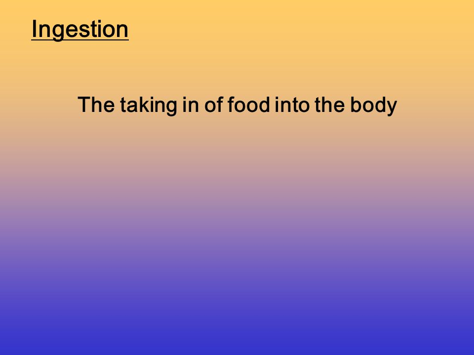 Three steps of Digestion 1.Ingestion 2.Digestion 3.Egestion