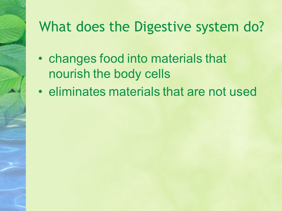 What does the Digestive system do? changes food into materials that nourish the body cells eliminates materials that are not used