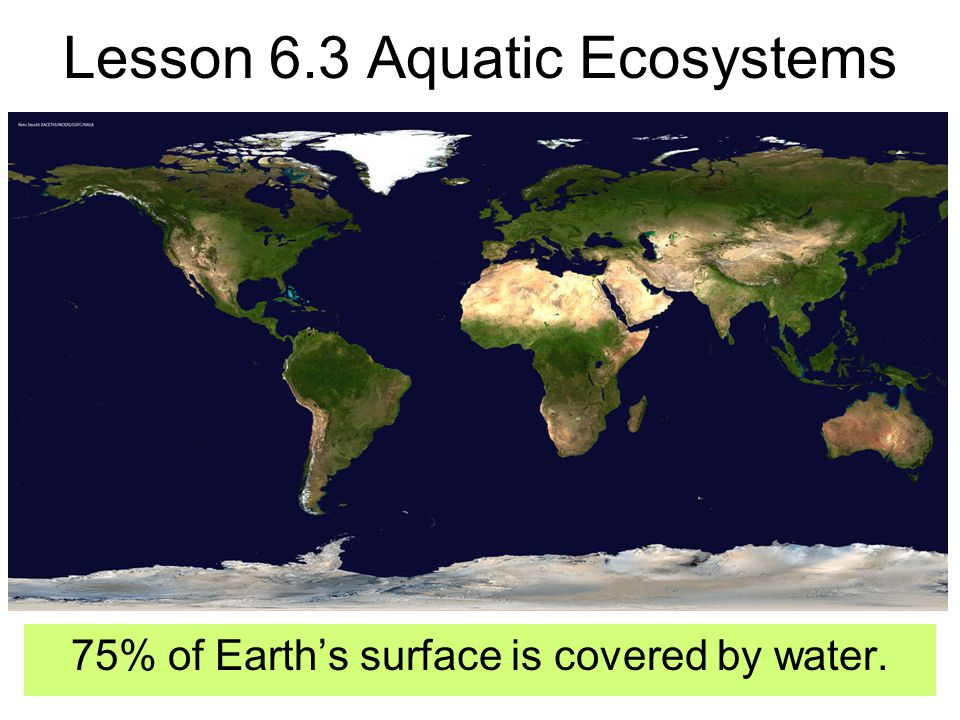 What are the basic needs of aquatic life? CO 2 O 2 Sunlight Nutrients- food & minerals