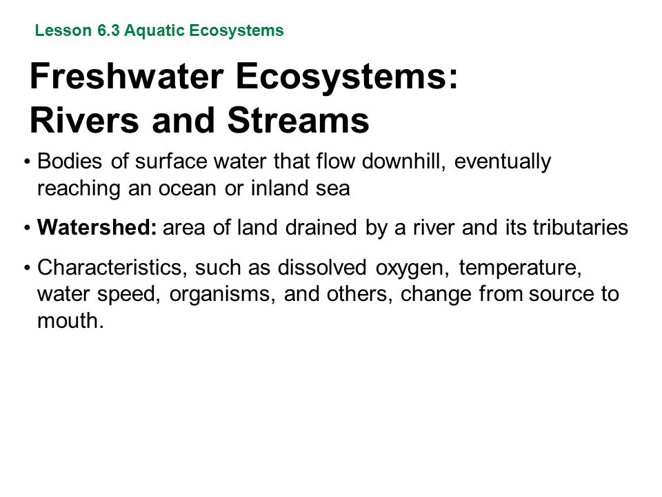 Freshwater Ecosystems: Rivers and Streams Lesson 6.3 Aquatic Ecosystems Bodies of surface water that flow downhill, eventually reaching an ocean or in