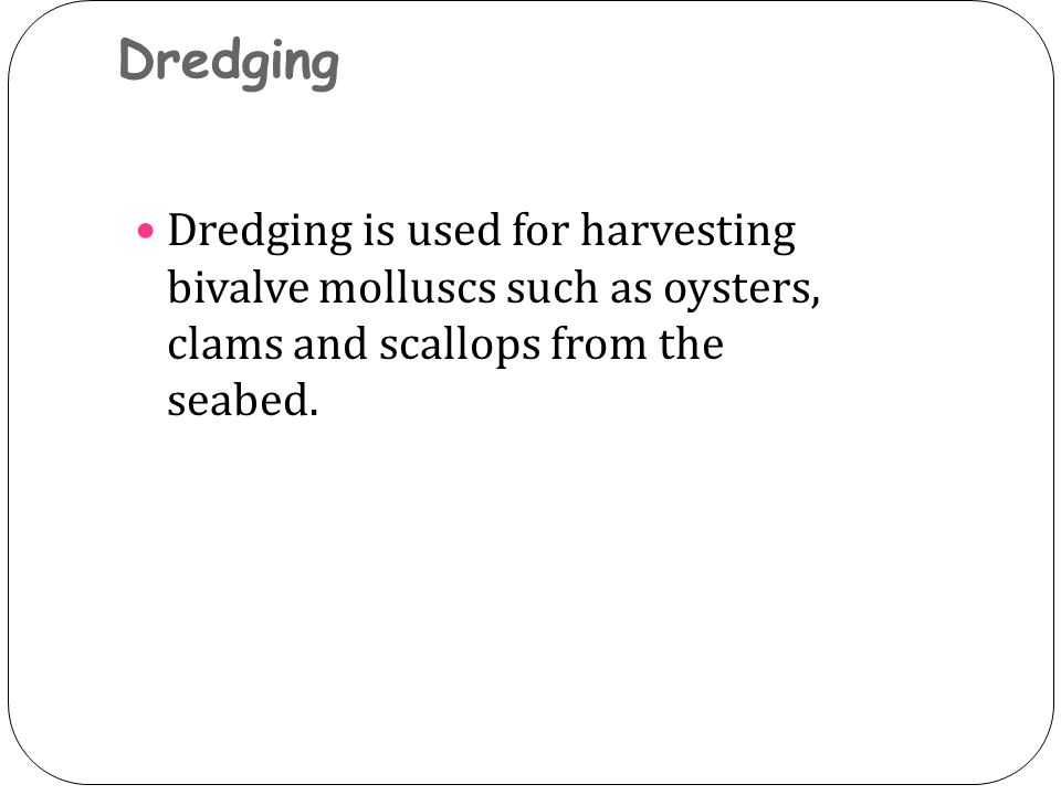 Dredging Dredging is used for harvesting bivalve molluscs such as oysters, clams and scallops from the seabed.