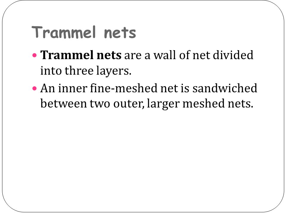 Trammel nets Trammel nets are a wall of net divided into three layers. An inner fine-meshed net is sandwiched between two outer, larger meshed nets.