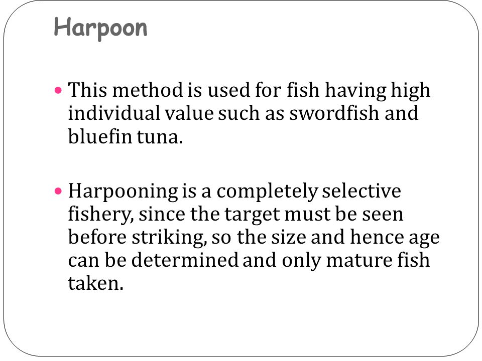 Harpoon This method is used for fish having high individual value such as swordfish and bluefin tuna.