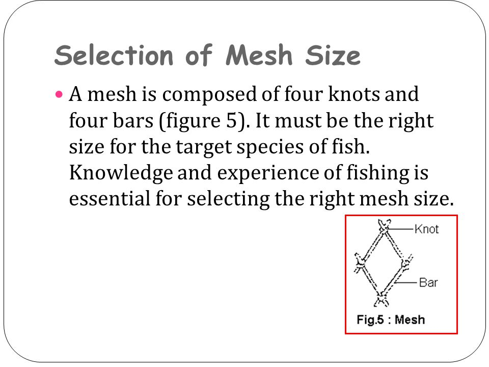 Selection of Mesh Size A mesh is composed of four knots and four bars (figure 5). It must be the right size for the target species of fish. Knowledge