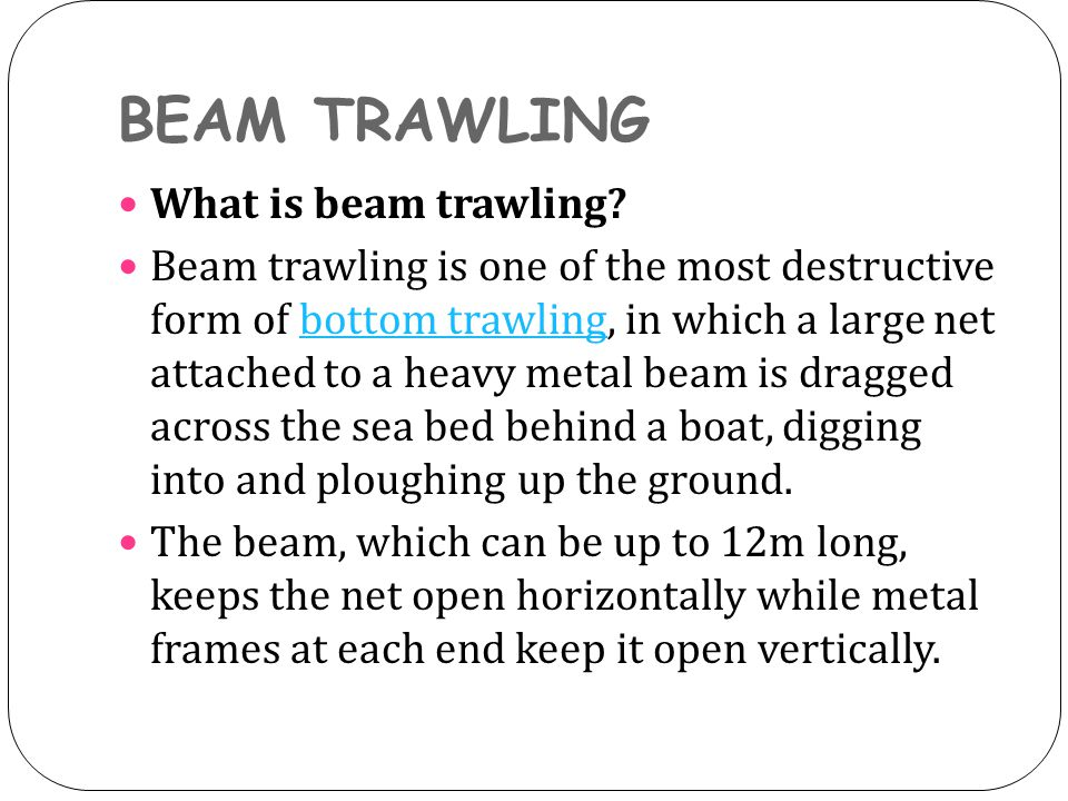 BEAM TRAWLING What is beam trawling.