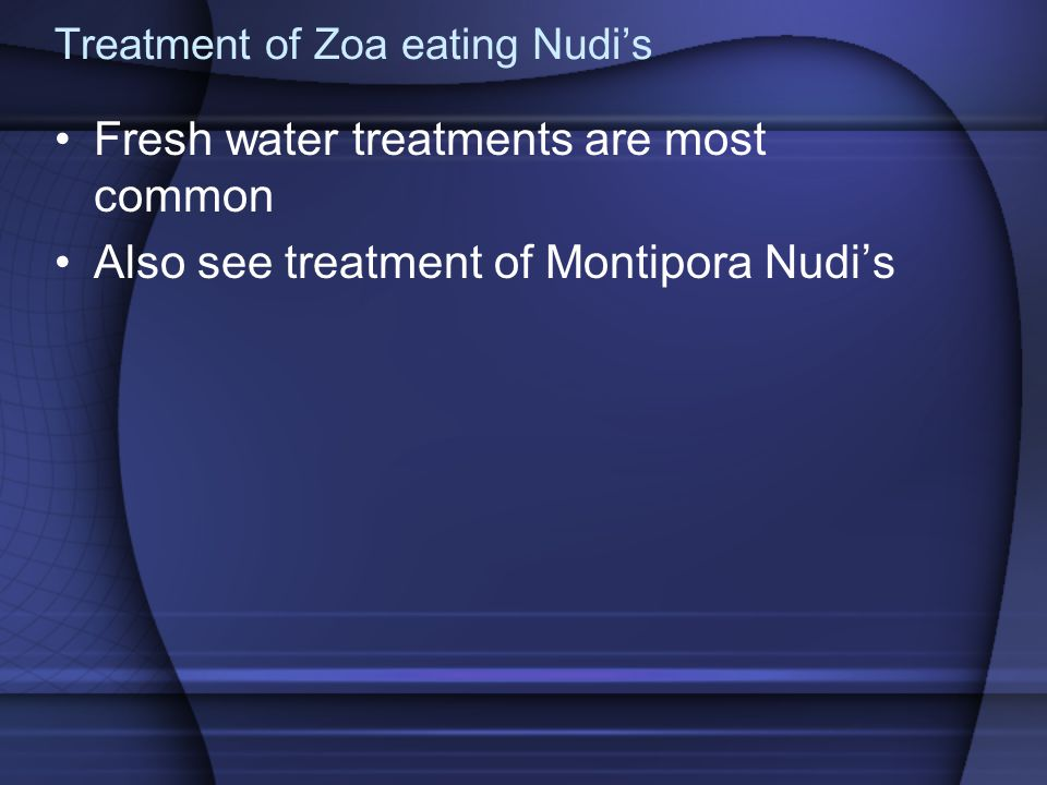 Treatment of Zoa eating Nudi's Fresh water treatments are most common Also see treatment of Montipora Nudi's