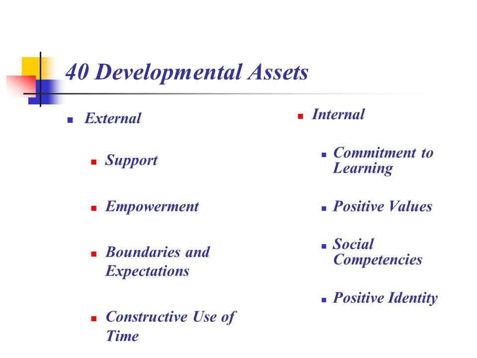 40 Developmental Assets External Support Empowerment Boundaries and Expectations Constructive Use of Time Internal Commitment to Learning Positive Values Social Competencies Positive Identity