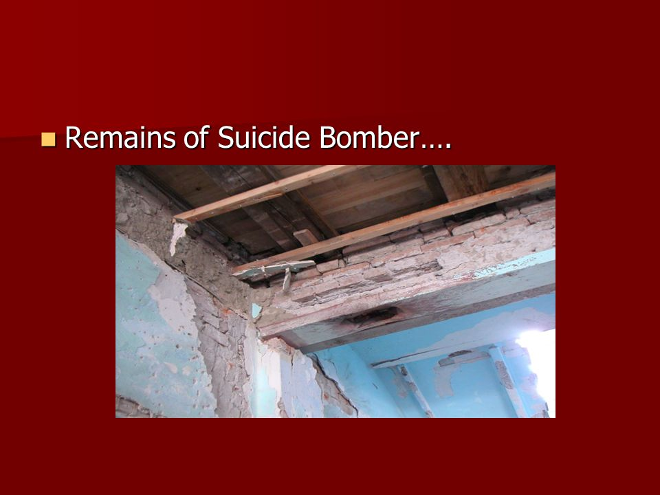 Remains of Suicide Bomber…. Remains of Suicide Bomber….