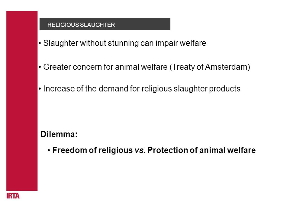 RELIGIOUS SLAUGHTER Greater concern for animal welfare (Treaty of Amsterdam) Slaughter without stunning can impair welfare Dilemma: Freedom of religious vs.